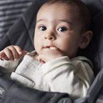 BABYBJÖRN Transat Bliss,Anthracite de la marque BabyBjörn image 3 produit