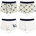 LeQeZe Boxer Garçon Lot de 6 Enfant Slip Garcon Calecon Bébé Coton Culotte Pantalon sous-Vêtement 2-11 Ans de la marque LeQeZe image 1 produit