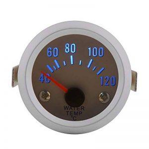thermomètre à eau TOP 12 image 0 produit