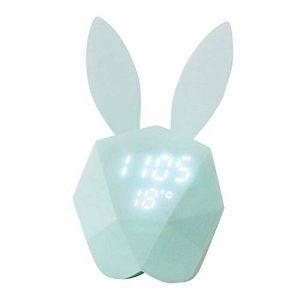 thermomètre pour chambre bébé TOP 11 image 0 produit