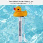 VGEBY1 Thermomètre à Eau, Mini Bande Dessinée Flottant Thermomètre à Eau Spas Thermomètre à Eau pour Piscine Aquarium Fish Tank Aquarium de la marque VGEBY1 image 4 produit